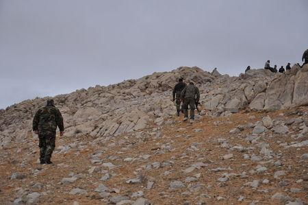 Forces loyal to Syria's President Bashar al-Assad walk atop of a hill on the edge of Palmyra