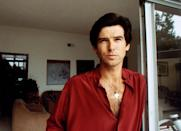 <p>The Irish actor moved to Los Angeles in the '80s and gained fame for his role in the TV series <em>Remington Steele</em>.</p>