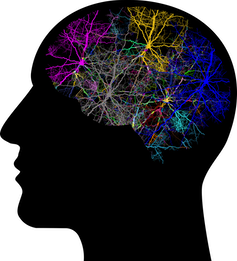 Silhouette of head with neuron clusters