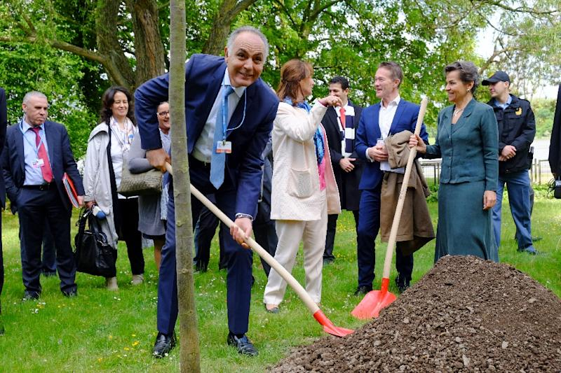 Moroccan Foreign Minister Salaheddine Mezouar (L) holds a shovel as he plants a tree next to French Environment minister Segolene Royal after the opening ceremony of the Bonn Climate Change Conference in Bonn, Germany, on May 16, 2016 (AFP Photo/Patrik Stollarz)