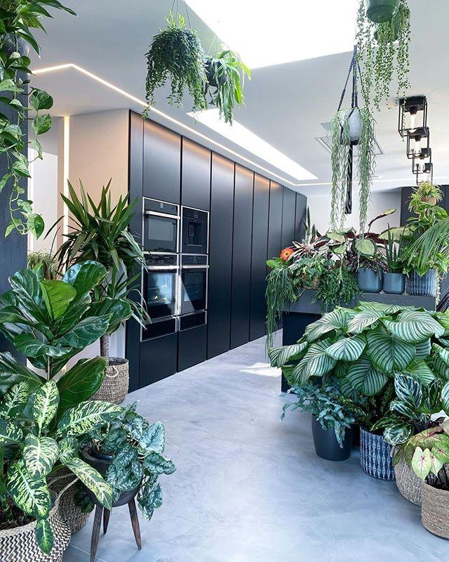 """<p>'The addition of plants, both real and false, is a great way to instantly uplift any space,' says Alex Willcocks, owner of <a href=""""https://burbeckinteriors.com/"""" target=""""_blank"""">Burbeck Interiors</a>. 'An easy way to add colour, plants are also great for making instant statement pieces in any room. Choosing the plant pot or vase can be a creative way to add texture and a good focal point, and is almost as important as choosing the plant itself.'</p><p>The team at <a href=""""https://www.virtualviewings.co/"""" target=""""_blank"""">Virtual Viewings</a> add: 'Plants on the floor, on the window sill, on shelves... Mess it up and put small ones in small spaces, massive ones that take up whole corners, trailing down over stuff indoors and outdoors. Instant glamour to any home!'</p><p><a href=""""https://www.instagram.com/p/CAXI1OWnj6A/?utm_source=ig_embed&utm_campaign=loading"""">See the original post on Instagram</a></p>"""
