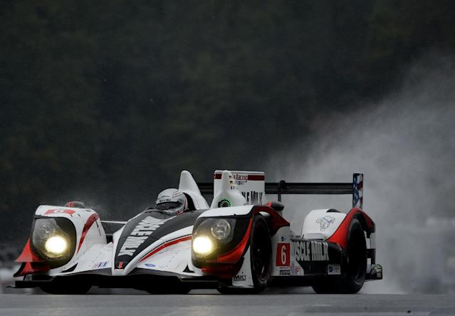 Romain Dumas, of France, drives the Muscle Milk Pickett Racing HPD ARX-03c during practice for the American Le Mans Series' Petit Le Mans auto race at Road Atlanta, Thursday, Oct. 17, 2013, in Braselton, Ga. (AP Photo/Rainier Ehrhardt)