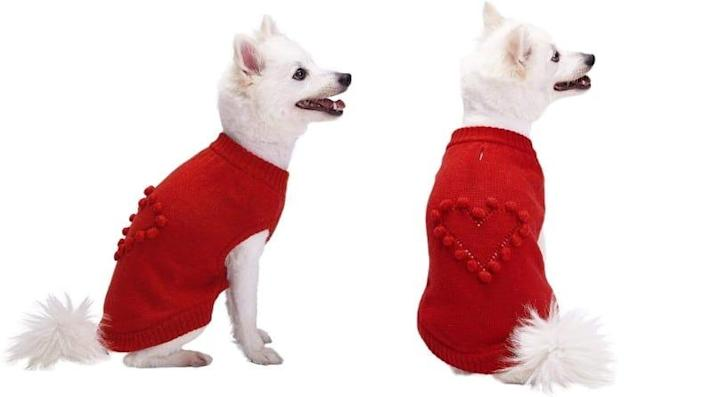 For your small but mighty pups with lots of personality.