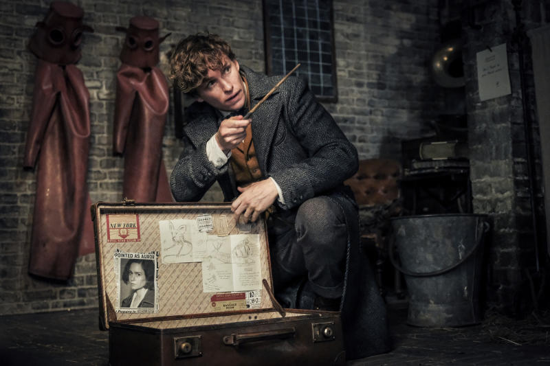 Eddie Redmayne in Fantastic Beasts: The Crimes of Grindelwald (Warner Bros. Pictures)