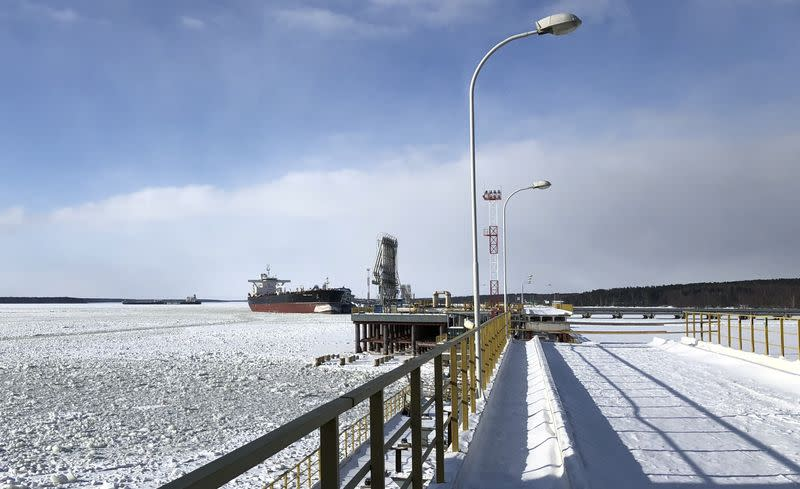 FILE PHOTO: A view shows the exporting facilities at the Baltic Sea port of Primorsk