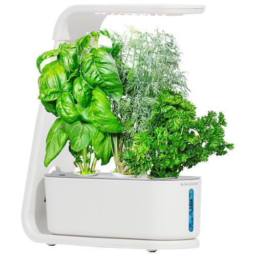AeroGarden Sprout Hydroponic Garden System. Image via Best Buy.