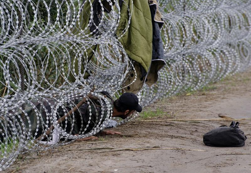 A migrant man creeps under the metal fence near the Hungarian village of Roszke, at the border with Serbia, August 26, 2015 (AFP Photo/Csaba Segesvari)