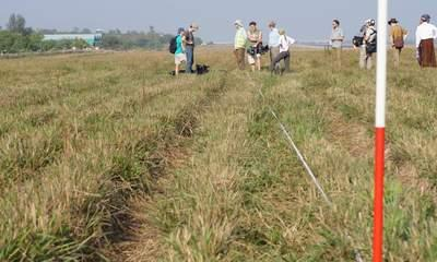 Burma Spitfires: UK Team Searches For Planes