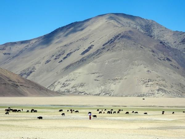 The cold desert of Ladakh Himalaya once experienced large floods, says Centre