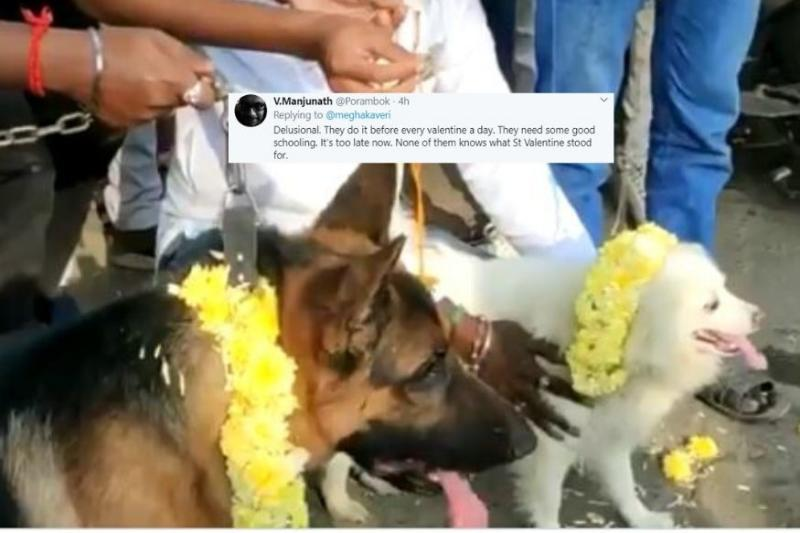 Bharat Sena Marries off Two Dogs to 'Condemn' Valentine's Day, Social Media Confused