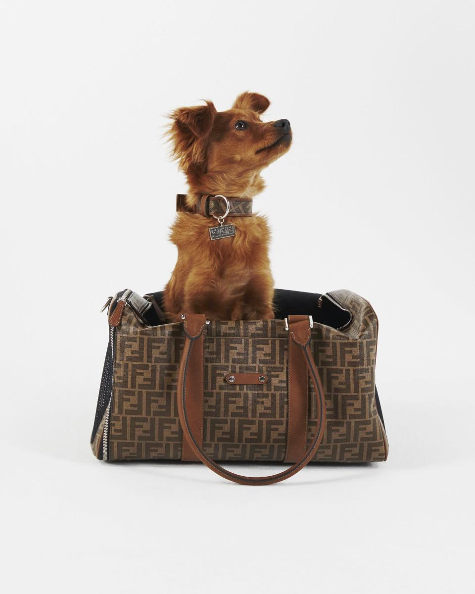 Fendi's travel accessories line for pets.