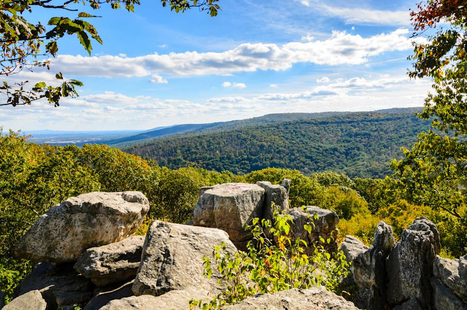 Catoctin Mountain Park is pictured.