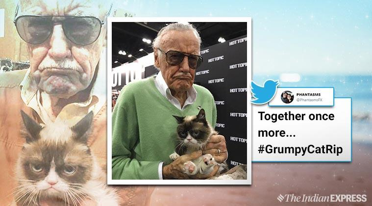 grumpy cat, grumpy cat died, internet grumpy cat meme, grumpy cat viral, #GrumpyCat, #GrumpyCatrip, trending, indian express, indian express news