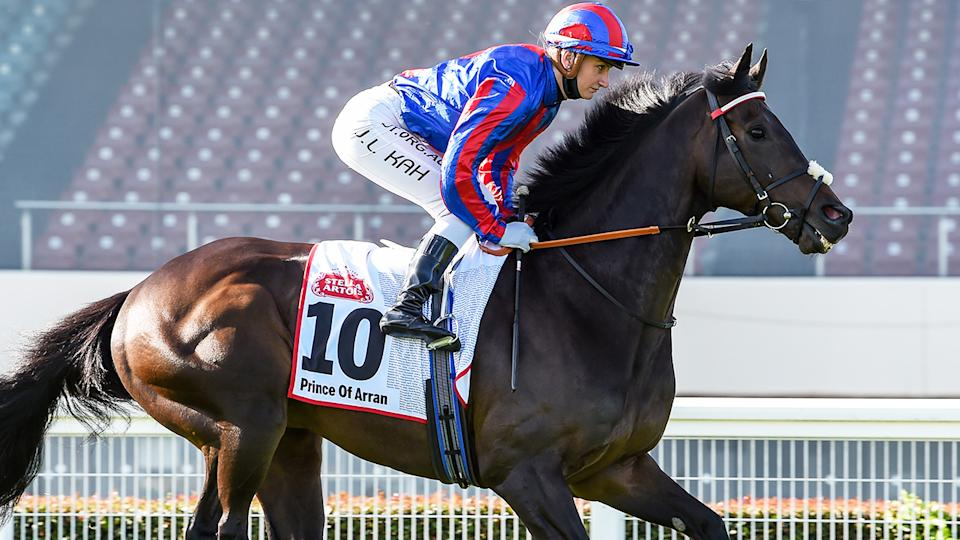 Jamie Kah and Prince Of Arran, pictured here prior to the Caulfield Cup.
