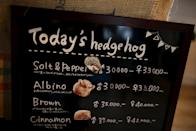A board shows a selection of hedgehogs for sale at the Harry hedgehog cafe in Tokyo, Japan, April 5, 2016. In a new animal-themed cafe, 20 to 30 hedgehogs of different breeds scrabble and snooze in glass tanks in Tokyo's Roppongi entertainment district. Customers have been queuing to play with the prickly mammals, which have long been sold in Japan as pets. The cafe's name Harry alludes to the Japanese word for hedgehog, harinezumi. Prices are shown in yen. REUTERS/Thomas Peter