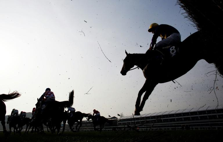 This year's Cheltenham Gold Cup, which brings the Cheltenham racing festival to a climax, takes place on March 17