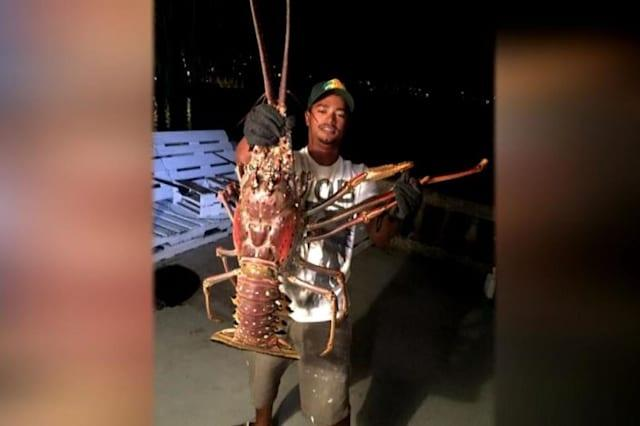 Fisherman releases rare lobster back into sea