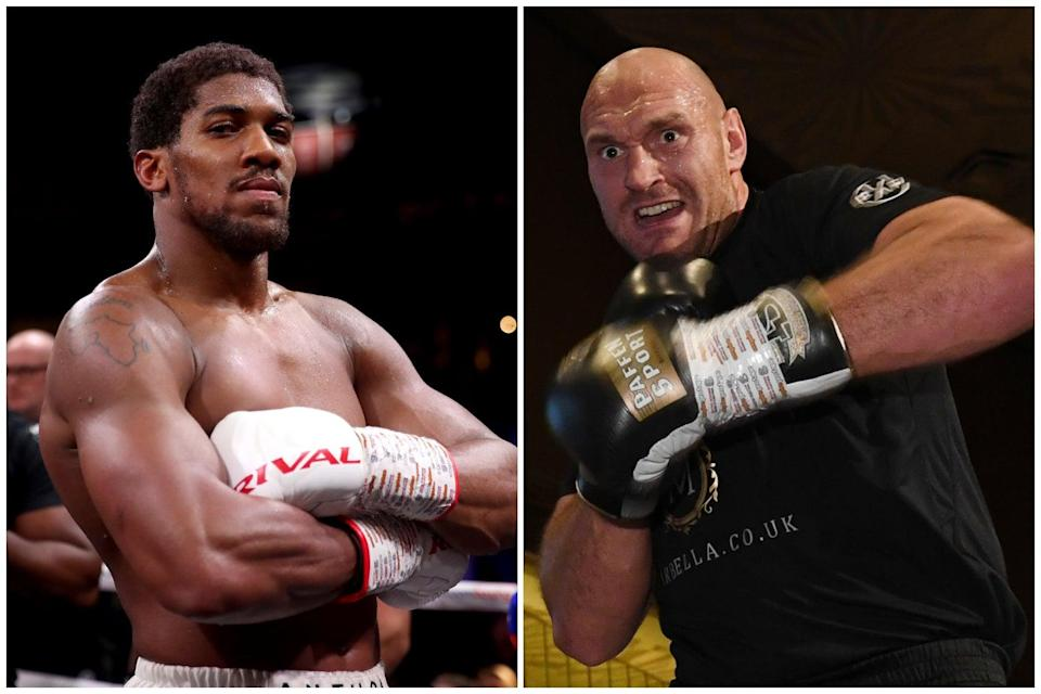 <p>Anthony Joshua and Tyson Fury are on course to finally lock horns in 2021</p> (PA/Getty Images)