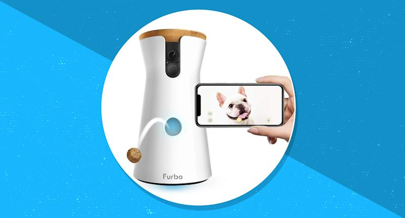 Amazon's best-selling pet camera is over 45 percent off during Prime Day. (Photo: Amazon)