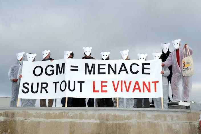 """Opponents of genetically modified organisms (GMO) hold a banner reading """"GMO = threat to all living things"""", on April 15, 2013 at the entrance of a plant belonging to US corporation Monsanto in Trebes, southwestern France (AFP Photo/Eric Cabanis)"""
