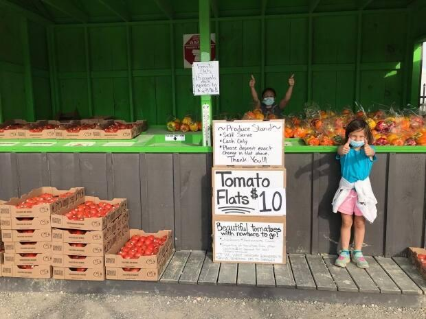 Tomato stand set up by Platinum Produce in Blenheim, ON.  (Platinum Produce/Facebook - image credit)