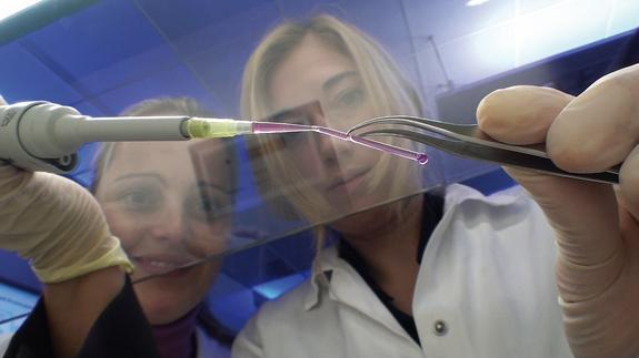 A group at the German Fraunhofer Institute has created blood vessels, by printing artificial biological molecules with a 3D inkjet printer and zapping them into shape with a laser.