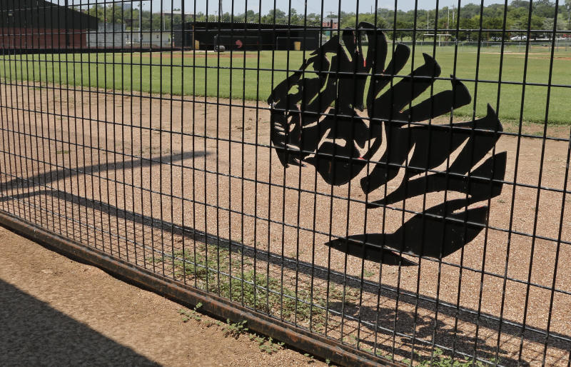 This photo shows the mascot of East Central University, a tiger, on a dugout fence at the baseball field at East Central University in Ada, Okla., Wednesday, Aug. 21, 2013. Australian Christopher Lane, who was on a baseball scholarship at East Central University was in Duncan, Okla., visiting his girlfriend, when he was shot and killed. (AP Photo/Sue Ogrocki)