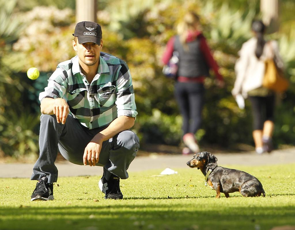 "Though Josh Duhamel's dachshund Zoe didn't seem like she was in the mood to play catch, she sure looked adorable while spending some quality time with the ""Safe Haven"" hunk in Santa Monica, California, this week. (12/27/2012)"