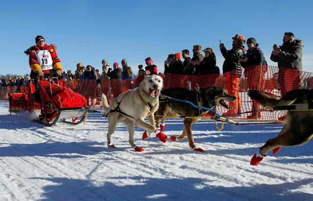<p>Mitch Seavey's team leaves the start chute at the restart of the Iditarod Trail Sled Dog Race in Willow, Alaska March 6, 2016. REUTERS/Nathaniel Wilder/File Photo </p>