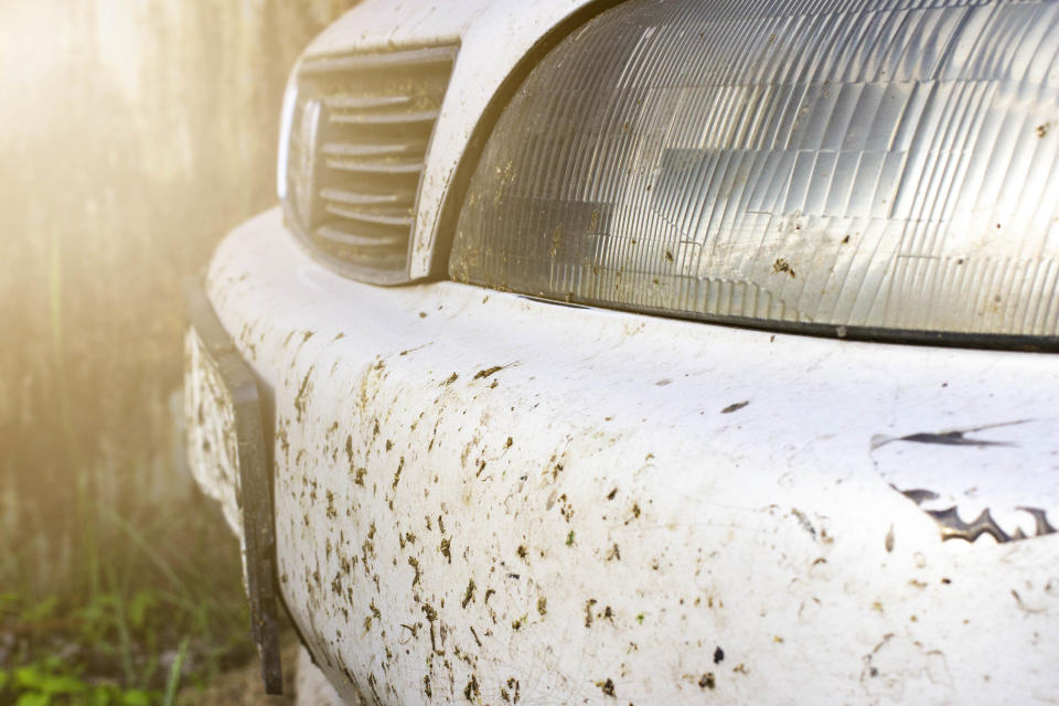 Dirty car bumper with mud splatters. Source: Getty Images