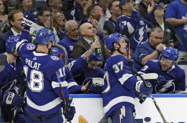 Tampa Bay Lightning right wing Nikita Kucherov, center, celebrates with teammates, including left wing Ondrej Palat (18) after being awarded a goal after a video review during the second period of an NHL hockey game against the Toronto Maple Leafs Thursday, Dec. 13, 2018, in Tampa, Fla. (AP Photo/Chris O'Meara)