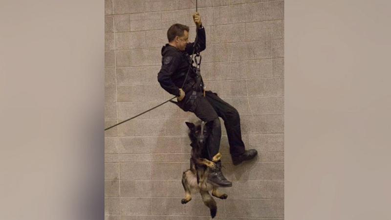 Police Dog Hangs Onto Officer for Dear Life in Adorable Photo