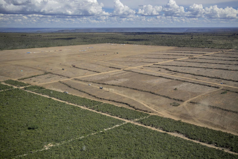 A deforested area in the municipality of Barreiras, Brazil (Picture: PA)