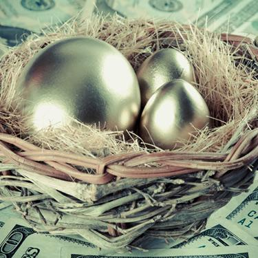 Golden-eggs-in-birds-nest-on-money_web