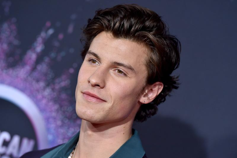 Singer Shawn Mendes donated to the Red Cross and local fire services. (Photo: Axelle/Bauer-Griffin via Getty Images)
