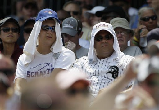 Baseball fans watch the Texas Rangers play against the Chicago White Sox during the second inning of a baseball game in Chicago, Thursday, July 5, 2012. (AP Photo/Nam Y. Huh)