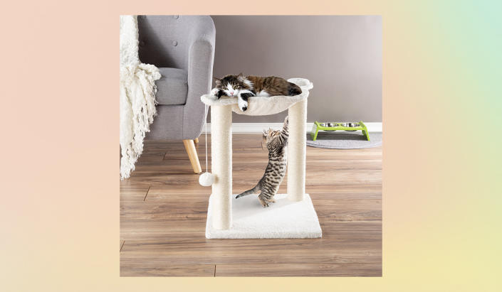 A cat tree for Her Majesty's many (okay, two) moods: the bottom level for when she's ignoring you; the top for when she's judging you.  (Photo: Walmart)