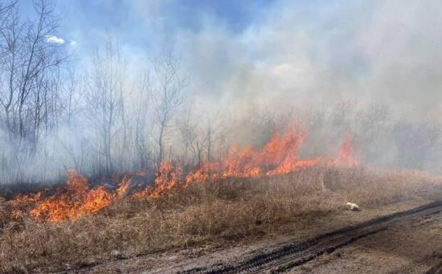 The Wadena Volunteer Fire Department had three fire calls on Wednesday, two which were out-of-control bush fires.