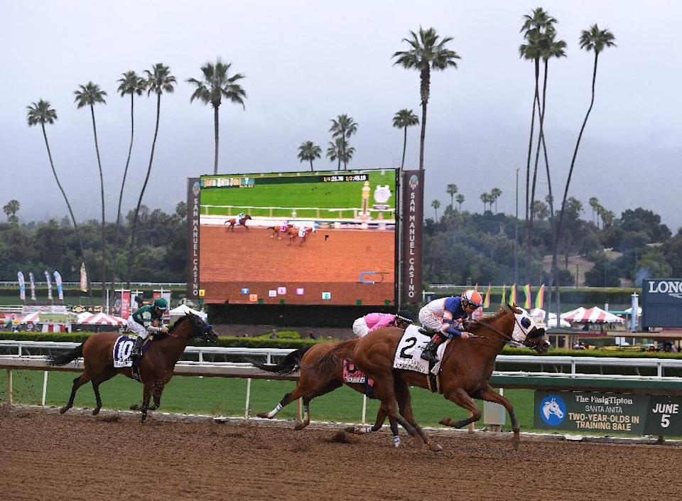 Owners of the Santa Anita racetrack have rejected calls to suspend racing after two more horse fatalities at the course (AFP Photo/Mark RALSTON)