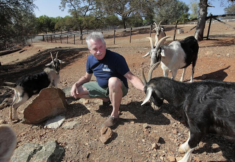 Steve Buettner, who is a  plaintiff in a class action lawsuit against the state, is seen with his goats at his home in Valley Springs, Calif., Thursday, Oct. 4, 2012. Buettner and 10 other California residents who have joined with the Howard Jarvis Taxpayers  Association to file a lawsuit against the state seeking to block a $150 fee assessed on rural property owners  to raise money for fire prevention. The lawsuit, filed in Sacramento County Superior Court, Thursday, claims the fee is actually an illegal tax that requires a two-thirds vote of the Legislature rather than the simple majority vote it received in 2011. (AP Photo/Rich Pedroncelli)