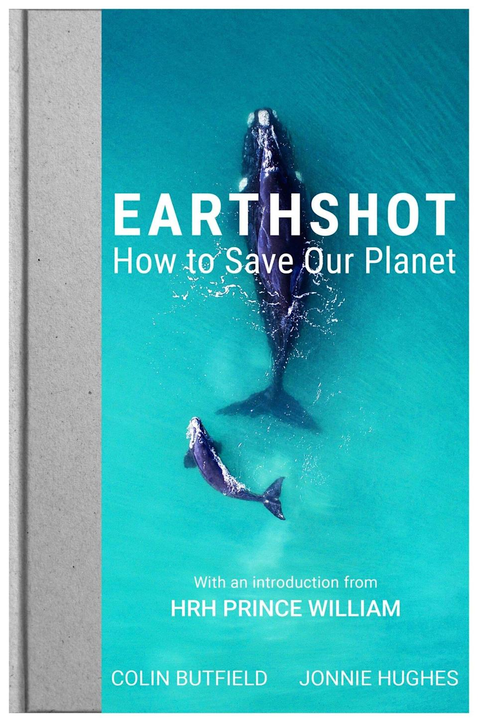 Earthshot - How to Save our Planet