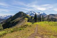 """Picture this: Walking for miles along a 6,000-foot ridgeway with two snow-capped peaks—Mount Baker and Mount Shuksan—in the distance; wildflowers (arnica, aster), and multicolored forests (when the bugginess dies down, too) in the foreground. Just about two-and-a-half hours north of <a href=""""https://www.cntraveler.com/destinations/seattle?mbid=synd_yahoo_rss"""" rel=""""nofollow noopener"""" target=""""_blank"""" data-ylk=""""slk:Seattle"""" class=""""link rapid-noclick-resp"""">Seattle</a>, and open to hikers and llamas (!), you'll forget how hard you're working on the Skyline Divide Trail here—the views are non-stop in every direction."""