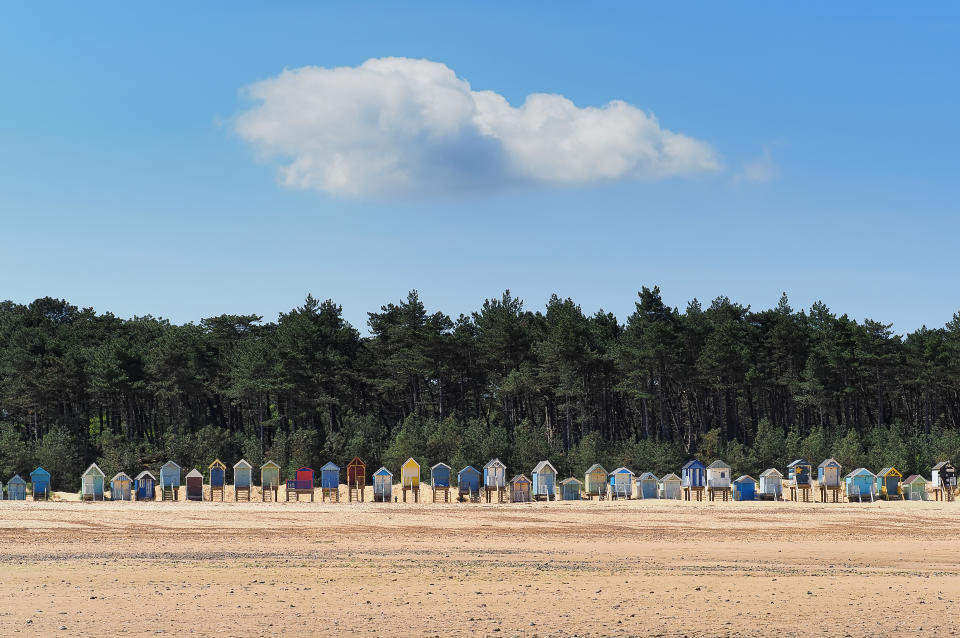 A row of colourful beach huts on Holkam beach with a row of pine trees behind them.