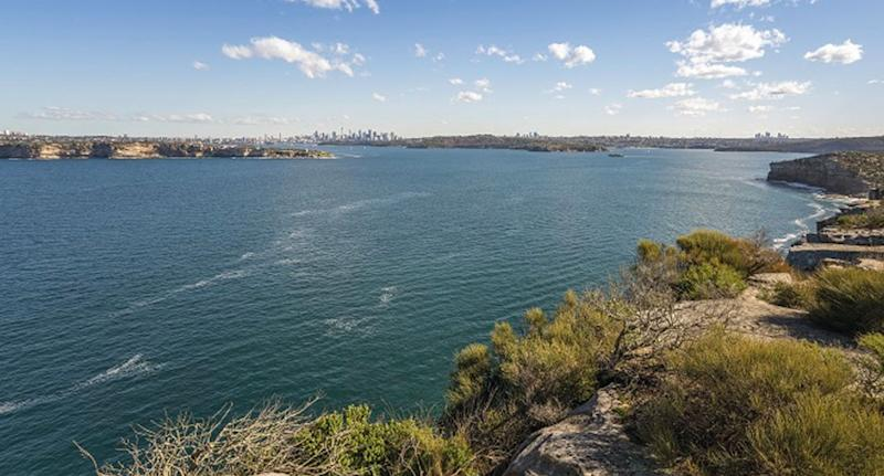 The view from Manly's North Head over Sydney Harbour. Source: NSW NPWS