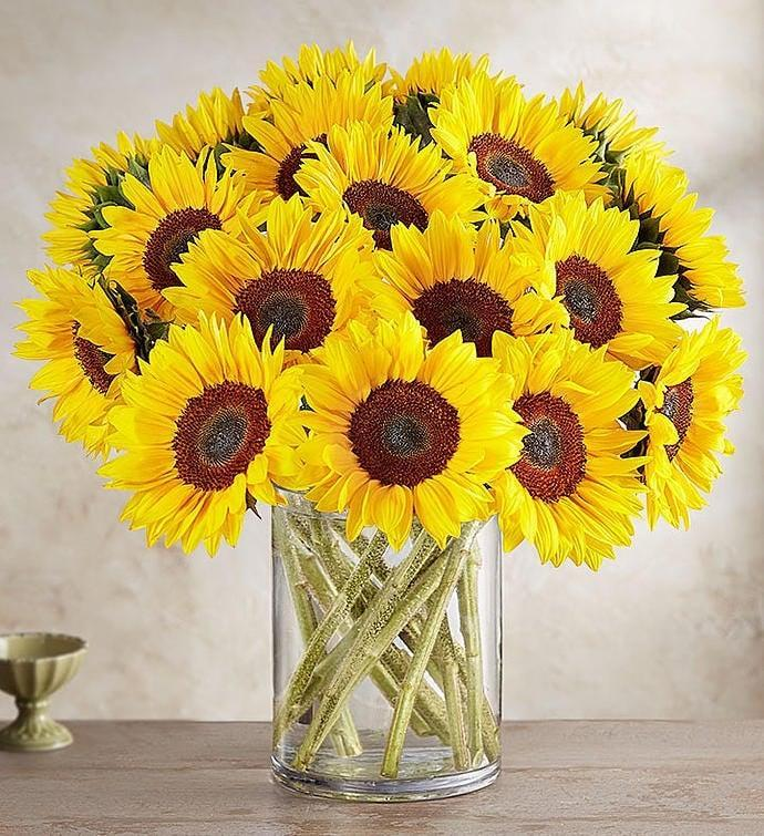 <p>Bring a little sunshine to their life with this <span>1-800-Flowers Sunflower Bouquet</span> ($70).</p>