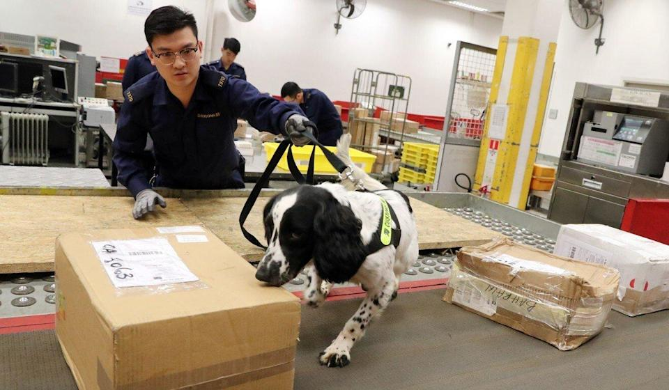 A freeze on most passenger air travel during the pandemic has led to a sharp uptick in the amount of drugs being sent via airmail parcels. Photo: K. Y. Cheng