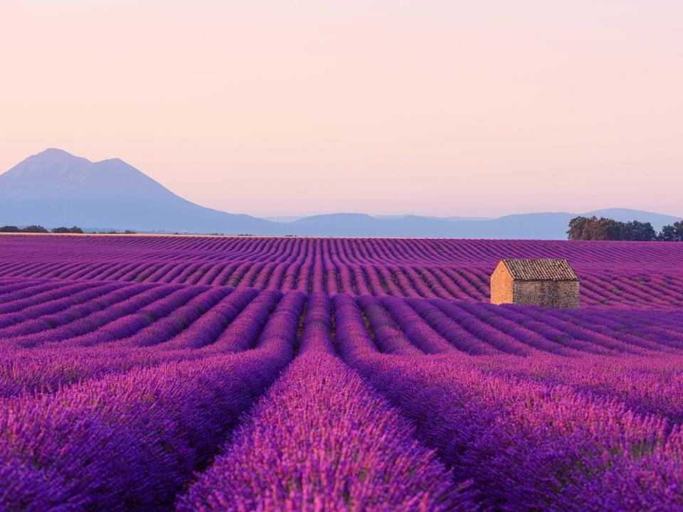 Danger zone? Provence in France, which was placed on the 'amber plus' lift during the summer peak (iStock)