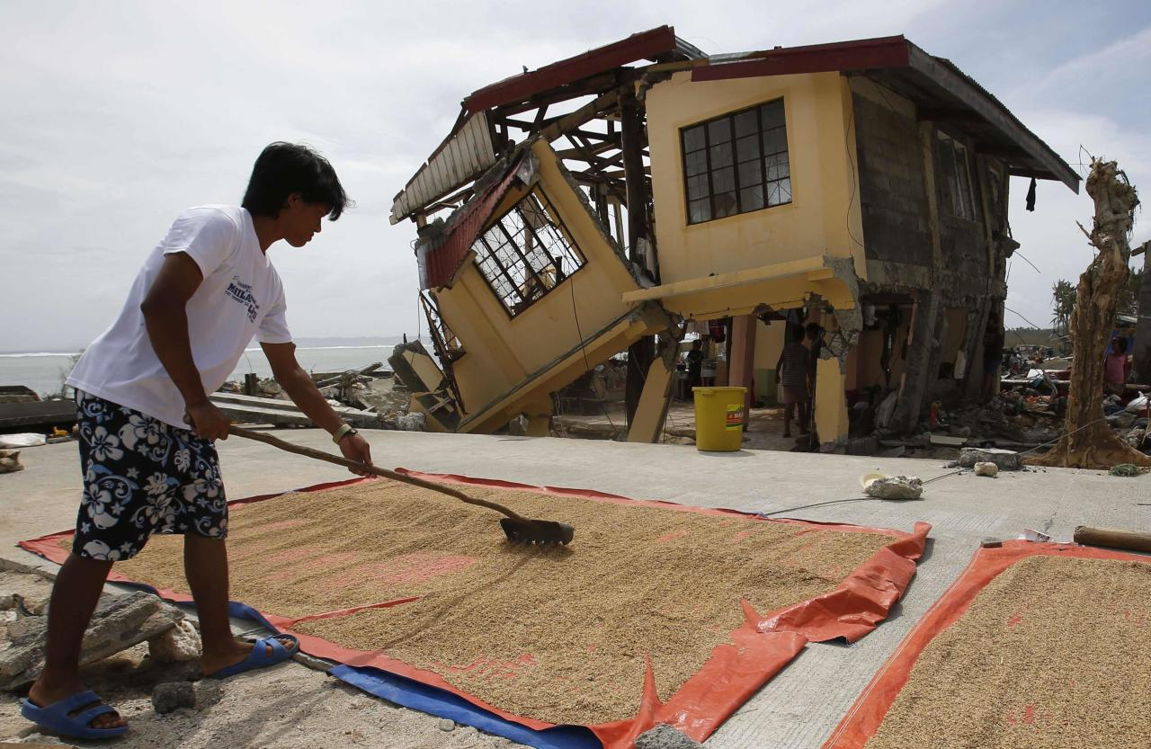 A man dries rice bran in front of his house damaged by super Typhoon Haiyan in Hernani, Samar, in central Philippines November 11, 2013. Dazed survivors of super Typhoon Haiyan that swept through the central Philippines killing an estimated 10,000 people begged for help and scavenged for food, water and medicine on Monday, threatening to overwhelm military and rescue resources. REUTERS/Erik De Castro (PHILIPPINES - Tags: DISASTER ENVIRONMENT)