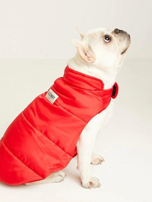 """This Cozy Puffer Jacket for Pets is available in sizes S to L and two colors. <a href=""""https://fave.co/3f1Cj6N"""" target=""""_blank"""" rel=""""noopener noreferrer"""">Get it on sale for 50% off (normally $16) at Old Navy</a>."""