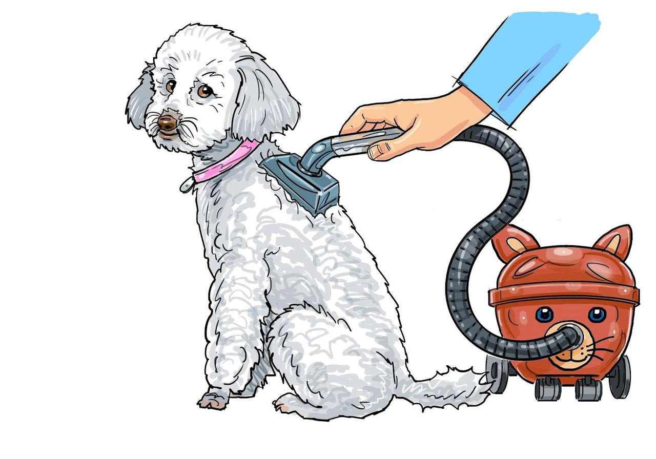 <p>In the past year alone, over 100 people have searched for a cat or dog vacuum cleaner at Argos. Why brush your pet when you can simply Hinch them to preened perfection in 30 seconds flat? One customer even requested a cylindrical version – perhaps so their pooch had their own mini Dyson to accompany their owner's.</p>